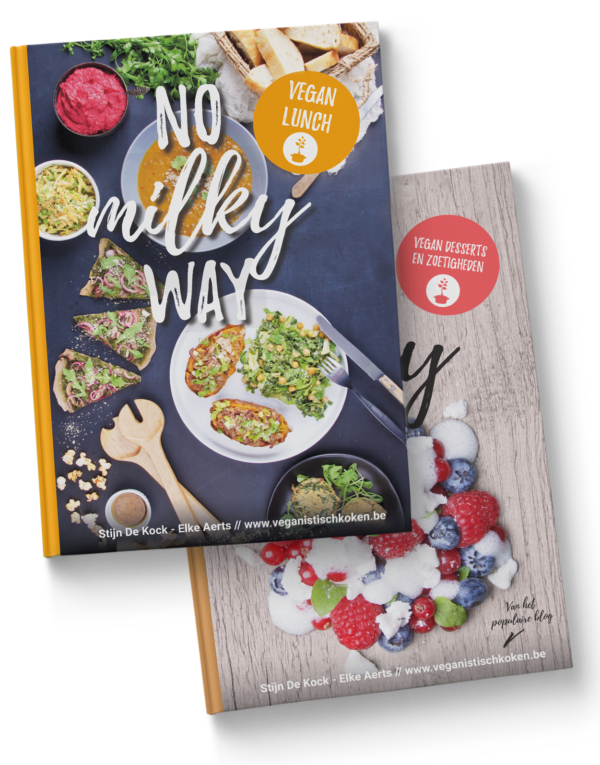 NO milky way - vegan desserts en vegan lunch - bundel